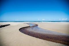 Krökt liten vik längs stranden Royaltyfri Bild