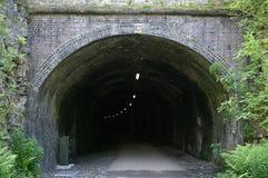 krökt tunnel Arkivfoton