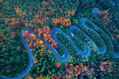 Krökt vägho den färgrika höstskogen royaltyfria bilder
