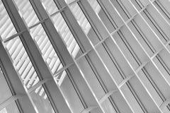 Krökta linjer i svartvitt Royaltyfri Fotografi