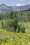Krönad Butte Colorado Rocky Mountains fotografering för bildbyråer