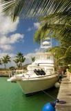 krążownik silnika Fotografia Royalty Free