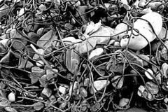 Kręcony drut i kamień Zdjęcie Stock