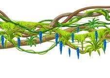 Kręcony dziki lian gałąź tło D?ungla winograd?w ro?liny ilustracji