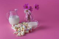 Kręcony marshmallow i mleko fotografia royalty free
