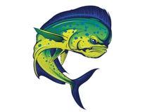 Kręcenia Mahi Mahi ryba Ilustracja Wektor