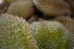 Kr?lewi?tko owoc, Durian jest tropikalnym owoc po?udniowo-wschodni Asia obrazy royalty free