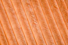 Krańcowy powiekszanie - Piórkowy szczegół Zdjęcia Stock