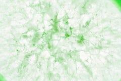Krańcowy makro- zielona agata plasterka kopalina Zdjęcia Stock