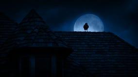 Kraai op Gotisch Dak bij Nacht stock video