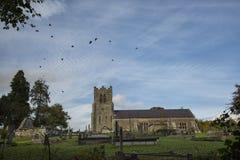 Kraaien die over kerk vliegen stock foto's