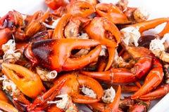 Krabów chwytniki - gotowani Fotografia Royalty Free