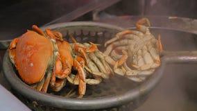 Krab die in een grote pan koken stock footage
