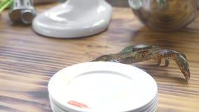 Krab die op houten lijst aangaande keuken in zeevruchtenrestaurant kruipen Leef krab lopend op keukenlijst aangaande voedselingre stock footage