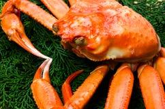 kraba czerwieni śnieg Zdjęcia Stock