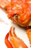 kraba czerwieni śnieg Obraz Royalty Free