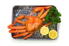 kraba czerwieni śnieg Fotografia Royalty Free
