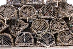kraba homara sieć puszkuje oklepów drewnianych Zdjęcia Royalty Free