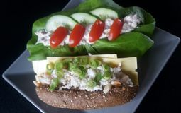 Kraba i tuńczyka kanapki obrazy royalty free