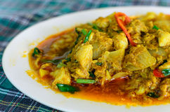 Kraba mięso w currym obraz royalty free