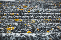 Krabb textur av ett grått tak med gula fläckar Arkivfoton