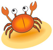 krabba Fotografering för Bildbyråer