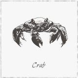 Krabba Den tecknade handen skissar Samling av skaldjur stock illustrationer