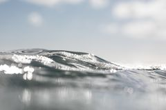 Krabba hav Arkivbild