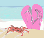 Krabba med badsko på strandsanden Arkivbild