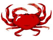 krabbared Arkivfoto