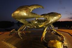 Krabbastaty i krabi arkivbild
