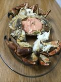 Krabbe Stockfotografie