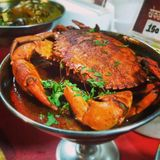 Krabbe Masala stockfotos