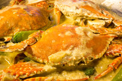 Krabbe mit Kokosmilch Lizenzfreies Stockfoto