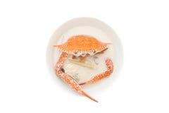 Krabbe und Kokosmilch, thailändisches Lebensmittel stockfotografie