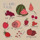 Krabbelbessen en vruchten Vectorhand getrokken illustratie met wit overzicht Stock Afbeelding
