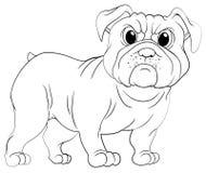 Krabbels die dier voor pug hond opstellen Royalty-vrije Stock Afbeelding