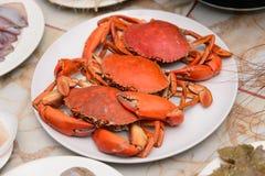 Krabben auf einer weißen Platte stockfotos