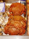 Krabben im Verkauf im Markt in Marbella in Spanien Lizenzfreies Stockfoto