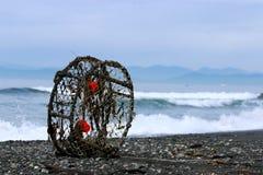 Krabben-Topf auf Strand Lizenzfreie Stockfotografie