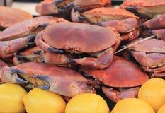 Krabben und Zitronen Lizenzfreie Stockfotos