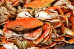 Krabben voor Verkoop Royalty-vrije Stock Afbeeldingen