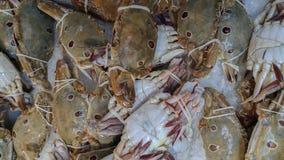 Krabben voor verkoop in de Thaise zeevruchtenmarkt Stock Foto's