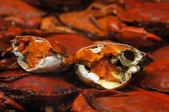 Krabbenfleisch Stockfotos