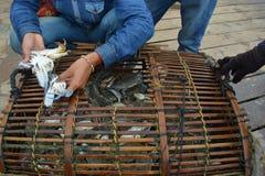Krabbenmarkt Stockbild