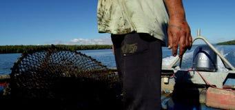 Krabbentopf, der über Bord geworfen wird stock video footage
