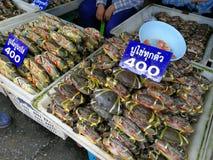 Krabbor på en havs- marknad Royaltyfri Fotografi