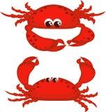 krabbor två Royaltyfri Fotografi