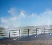 Krabbt hav Royaltyfri Fotografi