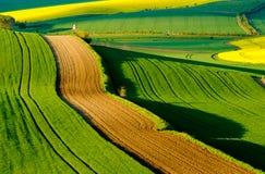 Krabbt ängvårlandskap i södra Moravia Arkivfoton